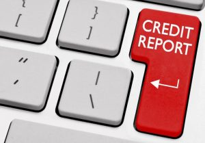 Employment Credit Reports